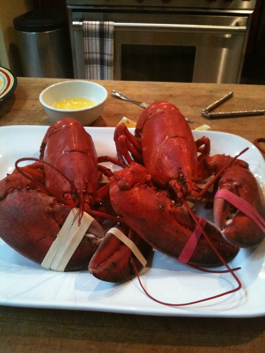Fresh Steamed Lobsters